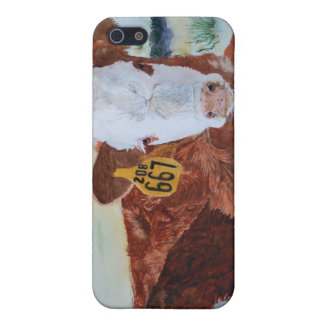 Hereford Calf iPhone 5/5S Case