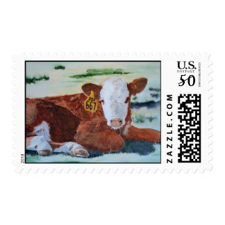 Hereford Calf Postage