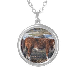 Hereford calves in winter meadow with snow silver plated necklace