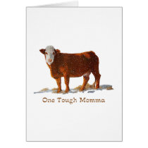 Hereford Cow: One Tough Momma: Mother's Day Card