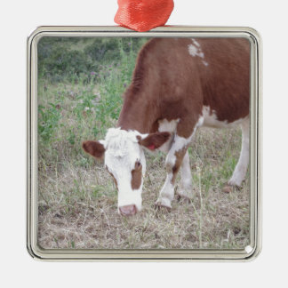 Hereford cow search for peace and love metal ornament