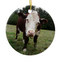 Hereford Cow Sticking out Tongue Ceramic Ornament