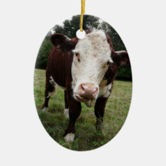 Hereford Cow Sticking out Tongue Double-Sided Oval Ceramic Christmas Ornament