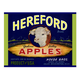 Hereford Washington Apples Postcard