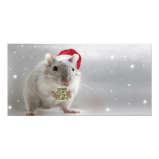 Here's a little Christmas gift for you xxx Card