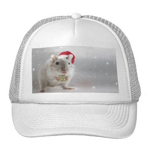 Here's a little Christmas gift for you xxx Trucker Hats