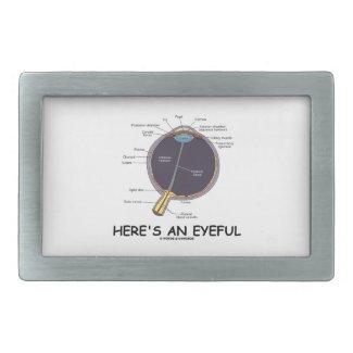 Here's An Eyeful (Eye Anatomy Humor) Rectangular Belt Buckles