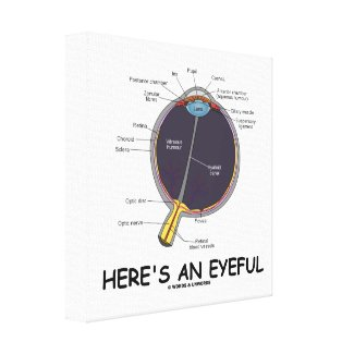 Here's An Eyeful (Eye Anatomy Humor) Stretched Canvas Prints