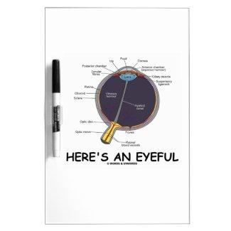 Here's An Eyeful (Eye Anatomy Humor) Dry Erase Whiteboards
