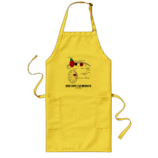 Here's How I Can Hibernate (Thermogenesis) Long Apron