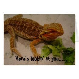 Here's Lookin' at You, Bearded Dragon Birthday Card