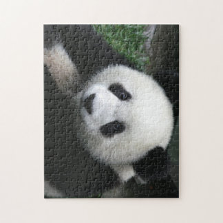 Here's looking at you baby panda puzzle. jigsaw puzzle