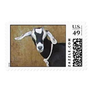 Heres looking at you kid postage
