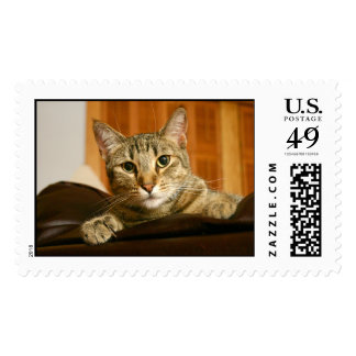 Here's Looking at You! Postage