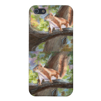 Here's Looking At You Squirrel IPhone 4 Case