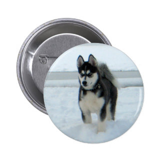 Here's Trouble Pinback Buttons
