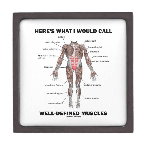 Here's What I Would Call Well-Defined Muscles Premium Trinket Boxes