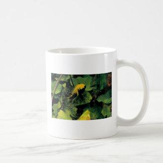 Herichthys labridens from Media Luna Coffee Mug