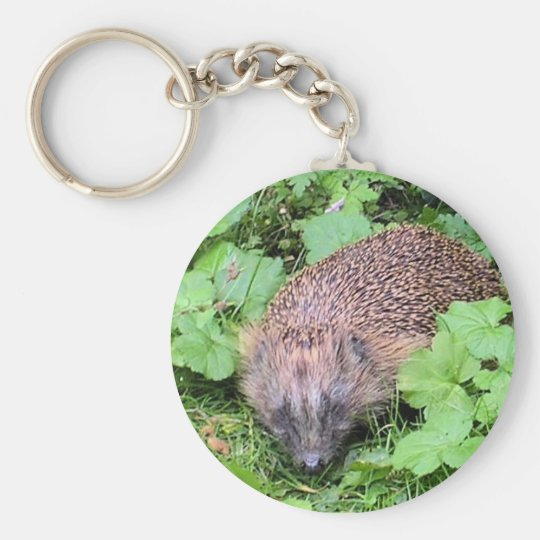 Herman Hedgehog Keychain