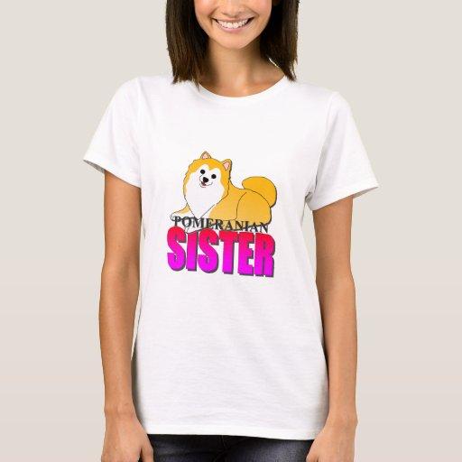 Hermana del perro de Pomeranian Playera