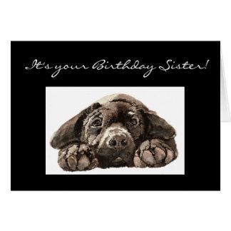 Hermana divertida del cumpleaños, perro triste, la tarjeta de felicitación