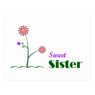 Hermana dulce tarjeta postal