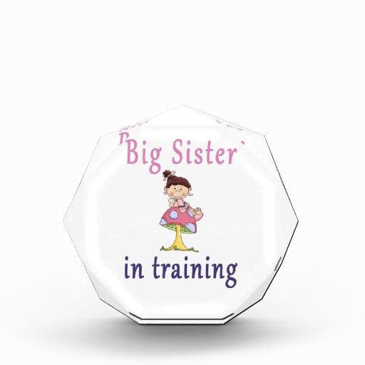 Hermana grande en hada del entrenamiento