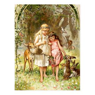 Hermann rojo blanco como la nieve y color de rosa  tarjetas postales