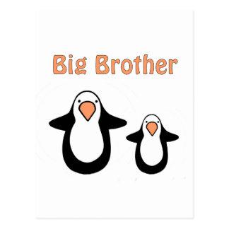 hermano mayor del pingüino tarjetas postales