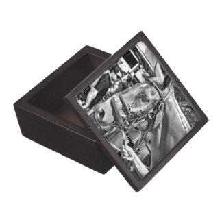 Hermanos acertados caja de recuerdo de calidad