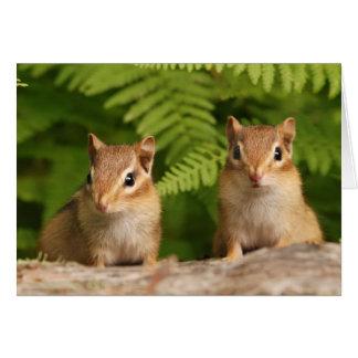 Hermanos adorables del Chipmunk del bebé Tarjeton