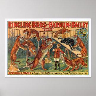 Hermanos Barnum de Ringling y poster de los tigres