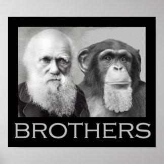 Hermanos de Darwin y del chimpancé Póster