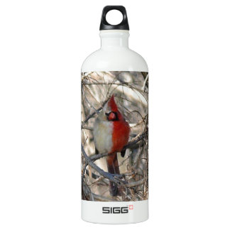 Hermaphadite Cardinal Bird SIGG Traveler 1.0L Water Bottle