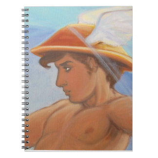 Hermes and the Zephyr - Hermes notebook