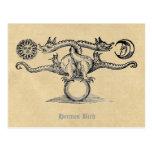 Hermes Bird Postcards