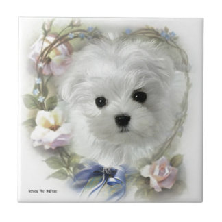 Hermes the Maltese Ceramic Tile