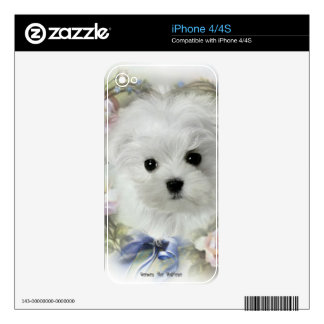 Hermes the Maltese Decal For The iPhone 4