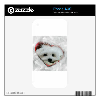 Hermes the Maltese iPhone 4 Decals