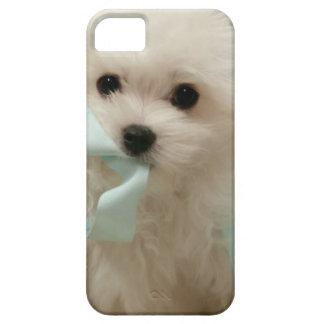 Hermes the Maltese iPhone SE/5/5s Case