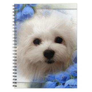 Hermes the Maltese Notebook