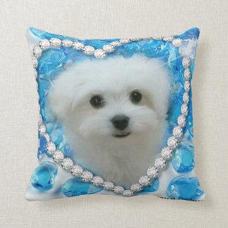 Hermes the Maltese Pillow/Cushion Pillows