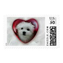 Hermes the Maltese Valentine Stamp