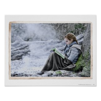 Hermione 13 print