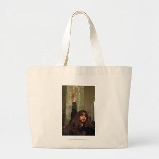 Hermione aumenta su mano bolsa tela grande