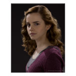 Hermione Granger 4 Poster