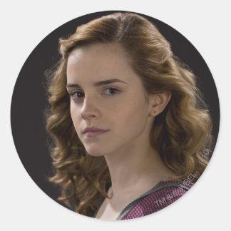 Hermione Granger 4 Round Stickers