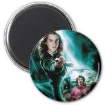 Hermione Granger and Professor Umbridge Fridge Magnets