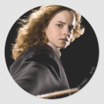 Hermione Granger Ready For Action Round Stickers