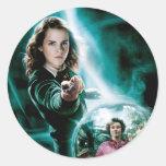 Hermione Granger y profesor Umbridge Pegatina Redonda